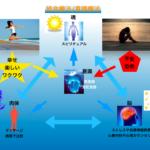 統合療法・意識療法とは?